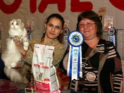 Выставка кошек во Владивостоке