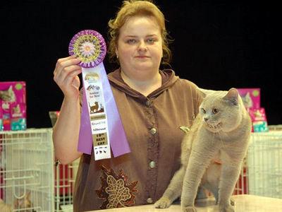 Выставка кошек в Находке